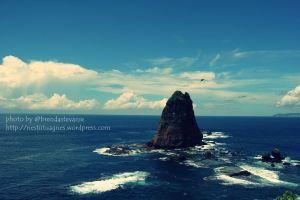 Papuma_Beach_14